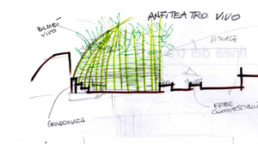 anfiteatro bambo vivo